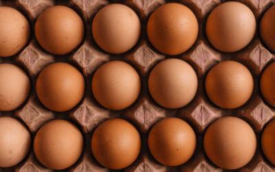 Commercial Kitchen Fun: Almost a Dozen Ways to Cook Eggs